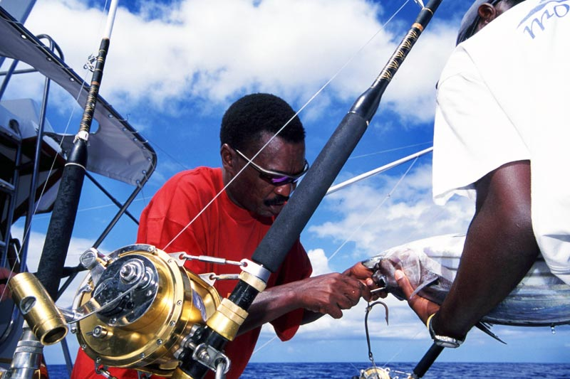 Big Game Fishing Charters Mauritius